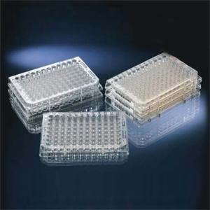 442404酶标板
