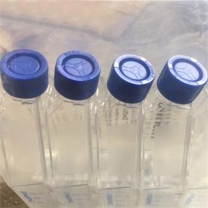 Thermo Scientific 159920 Nunclon ™细胞培养瓶