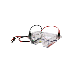 伯樂寬式迷你水平電泳槽Bio-rad Mini-Sub Cell GT Cell1704469