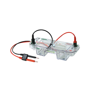 伯乐小型水平电泳槽Mini-Sub Cell GT Cell 1704486