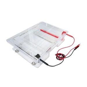 百晶 BG-subMAX 宽式水平电泳仪